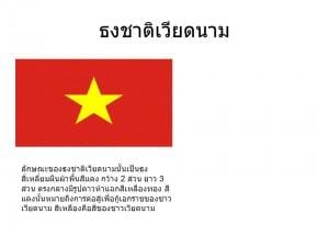 flag-vie